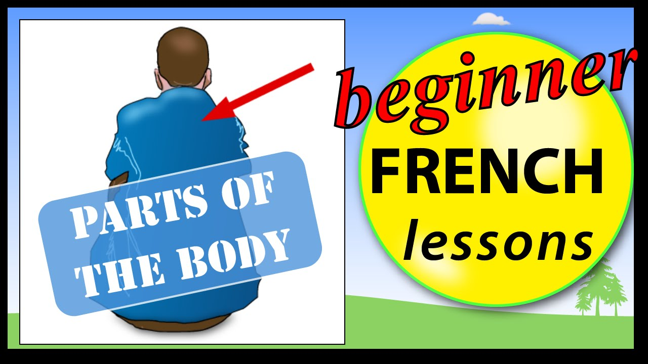 medium resolution of Parts of the body in French   Beginner French Lessons for Children - YouTube