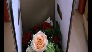 Blumenversand online - Blume2000 - Blumen online bestellen
