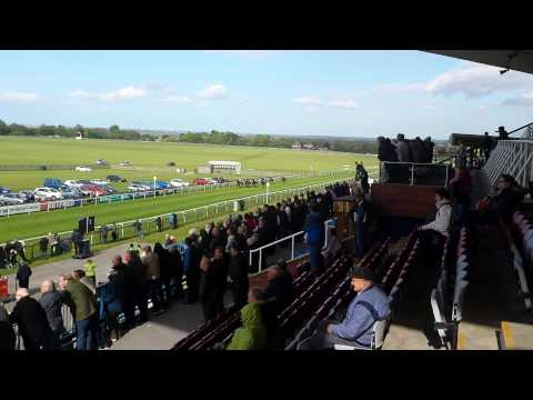 Horse racing at beverley racecourse