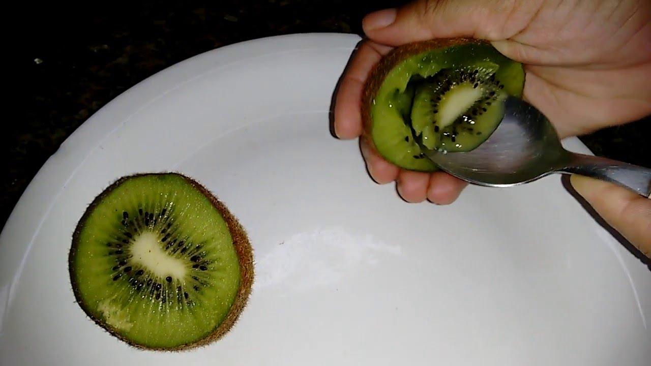 Resultado de imagem para Como plantar seu kiwi