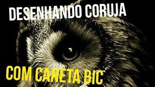 Desenhando uma coruja com caneta Bic (Drawing an owl with bic pen) Fábio Maia