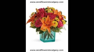canada cheap flower delivery