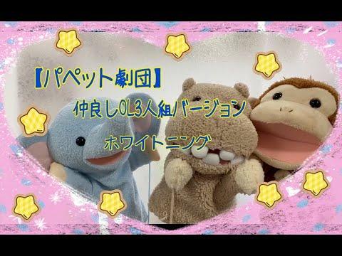 【パペット劇団】仲良しOL3人組バージョン ✨ホワイトニング✨ (*最後に🆖動画あり😅)