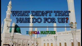 WHAT DIDN'T THAT NABI DO FOR US? | RANGA NATURE