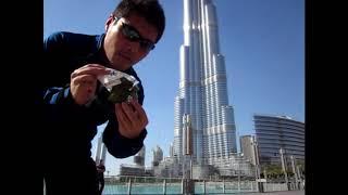 ドバイで食べた日本の梅おにぎり アラブ首長国連邦[UAE・ドバイ]