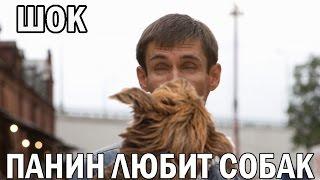 Подборка видео со скрытых камер БОНУС Панин и собака