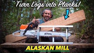 Using an Alaskan Mill to turn dead trees into wood you can use
