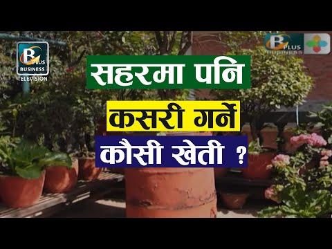सहरबजारको कौसीमा कसरी गर्ने कृषि उधम :KAUSI KHETI with  umesh kumar lama