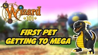 Wizard101: Training My First Pet To Mega