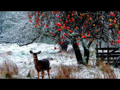 MOZART Piano Concerto No 22 in E flat major KV482 * EARLY WINTER