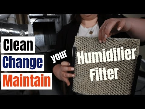 How to clean and change your furnace humidifier filter (with maintenance tips!)