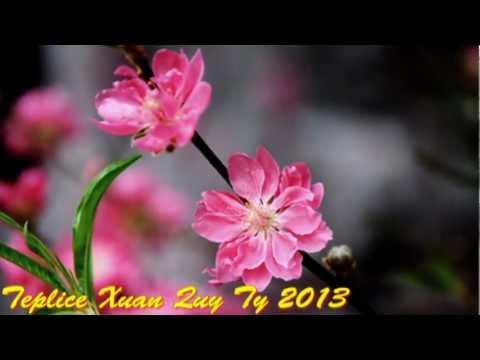 DON XUAN (Thuy Khanh)