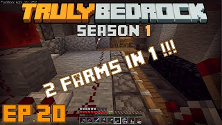 Truly Bedrock s1 e20 First layer of kelp farm done, starting a new awesome farm combo