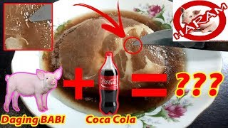 Download Video TERBUKTI!!! Experimen Daging Babi Kasih Coca Cola Alhasil??? MP3 3GP MP4