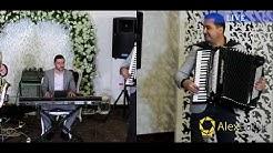 George Nicoloiu Muzica Populara De Petrecere Live Hore Sarbe