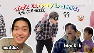 kq artists share one braincell | ateez, block b, maddox etc