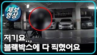 [제보영상] 한밤중 주차된 차로 다가오더니... / YTN