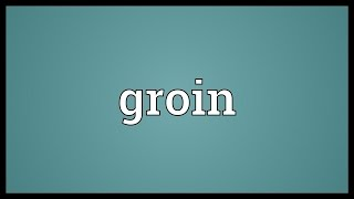 Groin Meaning