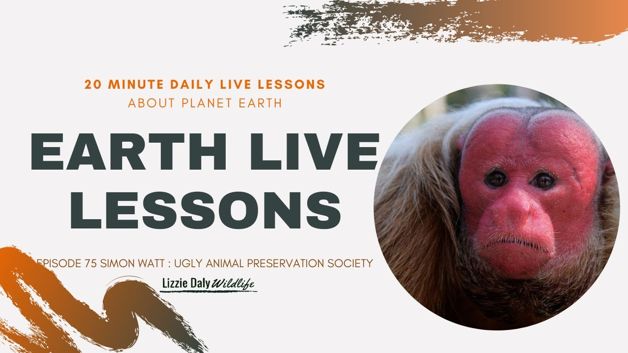 Earth Live Lesson with Simon Watt : Ugly Animals - YouTube