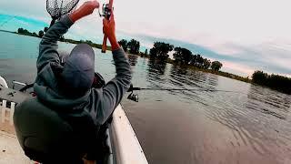 Lake Sakakawea is Hot!  Walleye fishing the VanHook Arm