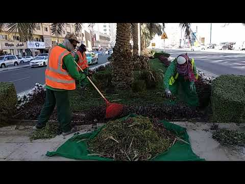 Garden work in qatar