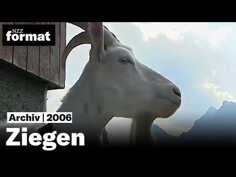 Meckerer die man liebt Ziegen - Dokumentation