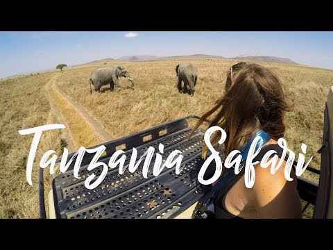 Serengeti Wildlife Safari in Tanzania  I  Travel Vlog 001 I GoPro HD