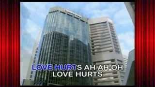 Love Hurts - Incubus (Karaoke-Videoke♪)