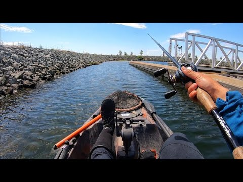 Fishing FRY BALLS Around Docks (Post Spawn Bass Fishing)