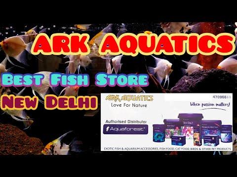 ARK Aquatics Visit | New Delhi's Biggest Wholesale & Retail Fish Store| Marine Reefers