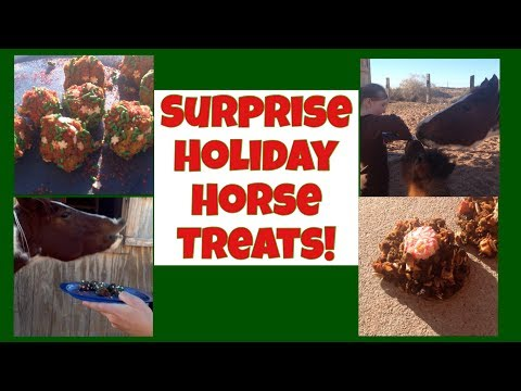 Holiday Horse Treat Challenge!/No Bake