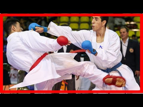 Sport News - Intl. karate cup to start in tehran