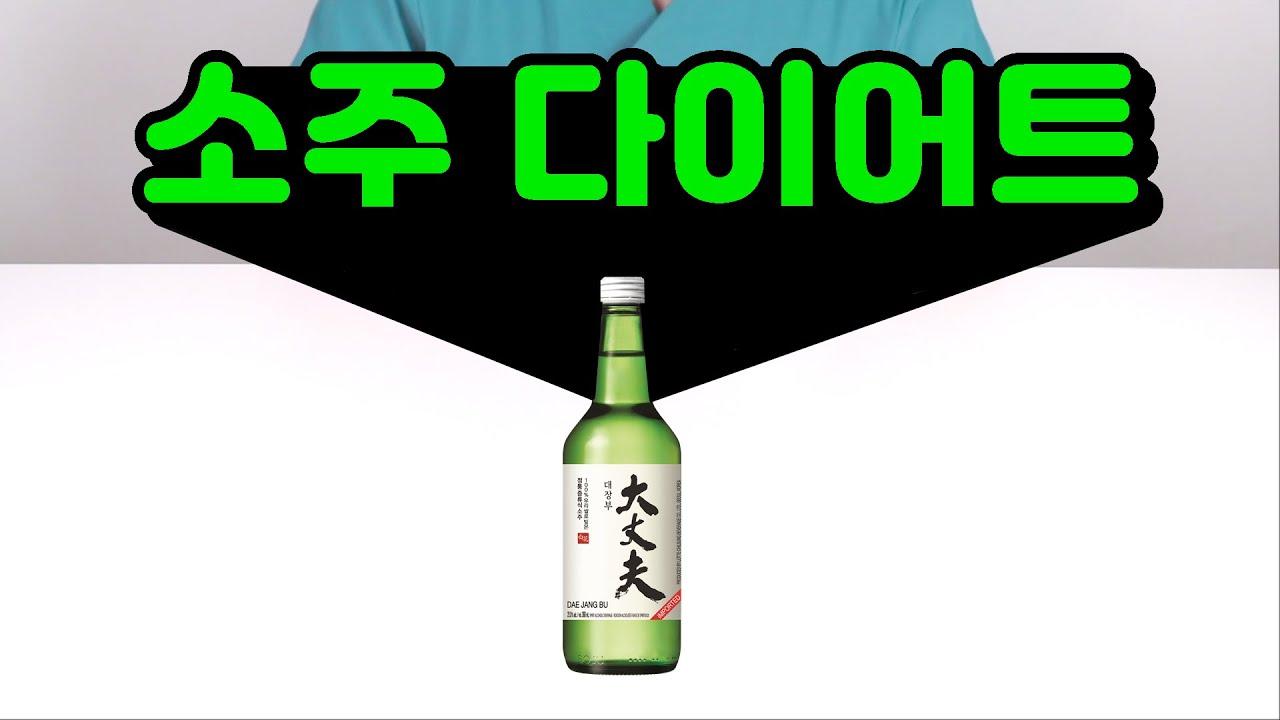 소주 마시면서 다이어트 하기 (ft. 다이어트용 소주 추천)