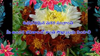 Happy Makar Sankranti wishes messages greetings Whatsapp Status Best Wishes Quotes HD