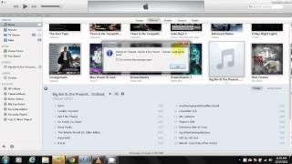 Import CD & Edit CD Information into Itunes 11