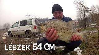 Wędkowanie Bez Gadania cz.26.2018 rok-pierwsze piękne ryby na Bolonkę