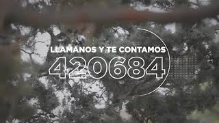 Video: Forestar Río GRande