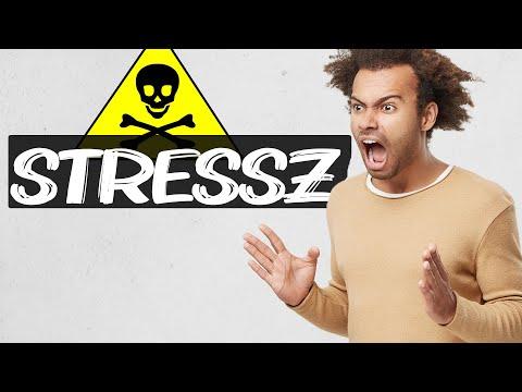 A stressz ellenszere 🤯 thumbnail