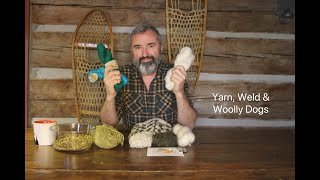 Yarn, Weld and Woolly Dogs