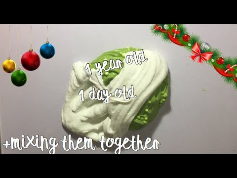 1 YEAR OLD SLIME Vs 1 DAY OLD SLIME! Mixing Them Together!