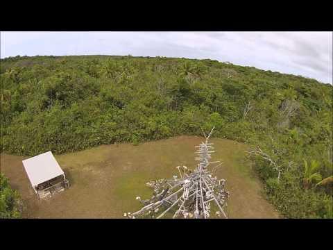 Around Niue