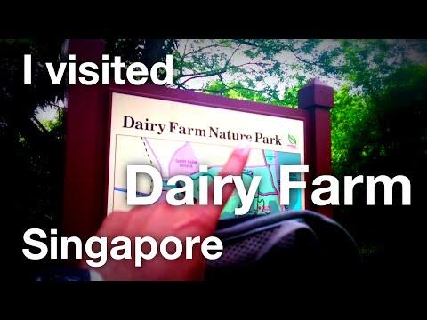 I visited Dairy Farm, Singapore