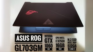 Review Asus ROG GL703GM - GTX 1060 6GB, 16GB RAM, i7 8750H, intel M.2 760p 512GB