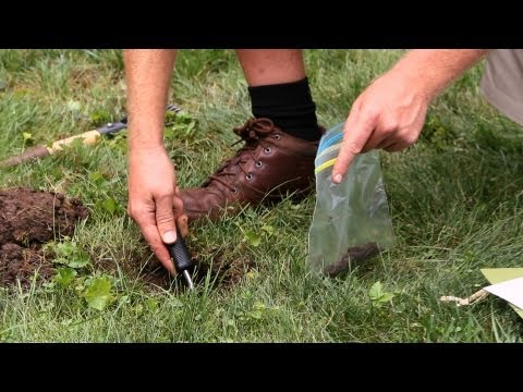 How to Take a Soil Test   Lawn & Garden Care
