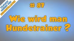 TGH 87 : Wie wird man eigentlich Hundetrainer? - Hundeschule Stadtfelle