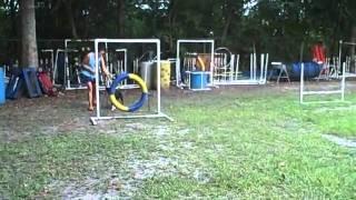 Adina Agility: Tire, A-frame, Wide Jump