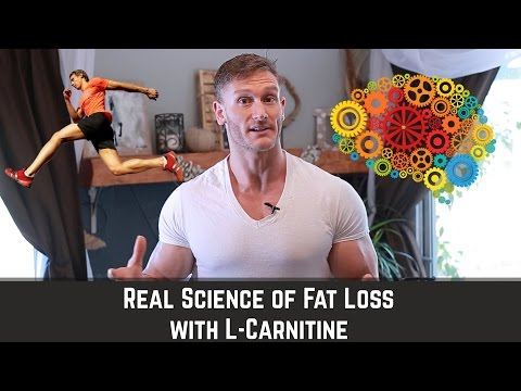 What is L-Carnitine | How Does Fat Get Mobilized - Thomas DeLauer