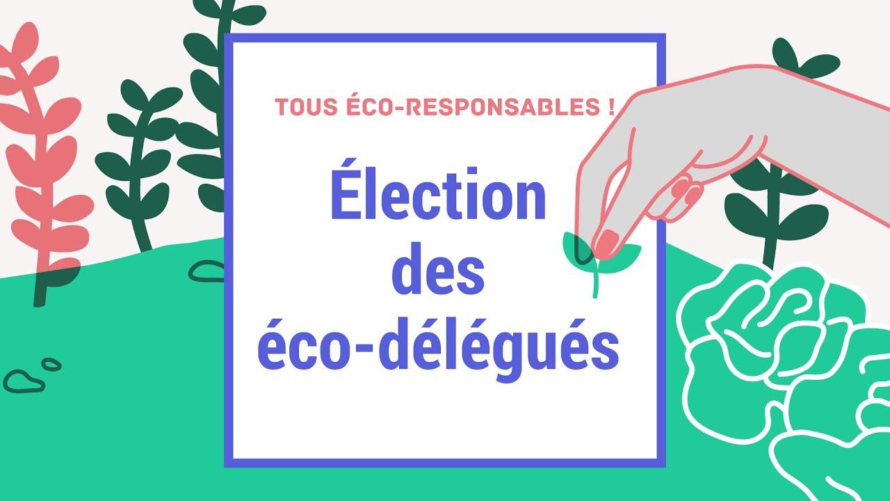Pré-commander usine authentique vente la moins chère Des élèves éco-délégués pour agir en faveur du développement ...