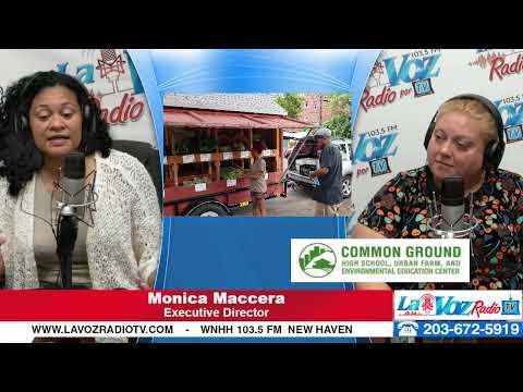 Monica Maccera, Common Ground High School