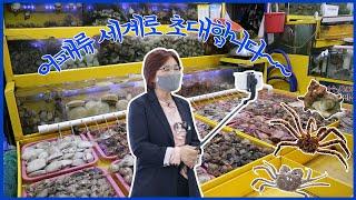 가락몰 수산시장 어패류의 세계로 초대
